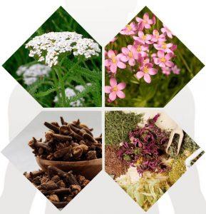 Детоксик, съставки цветя,