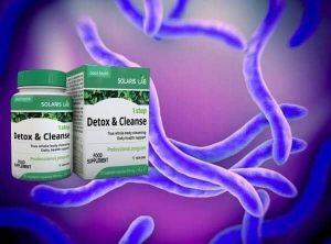 паразити и токсини в организма