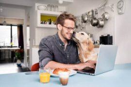 хоум офис, мъж, куче, работа от вкъщи