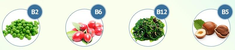 EcoSlim, ingredients