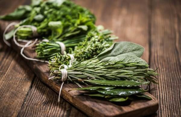 herbs for prostate