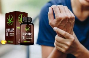 cannabis oil capsules price, pharmacy