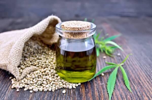 cannabis sativa seed oil
