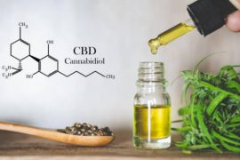 cannabis, hemp oil, cbd