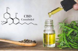 Cannabis Sativa – A Natural Mind, Soul, & Body Enhancement Solution!