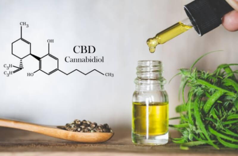 cannabis, hemp oil, cbd