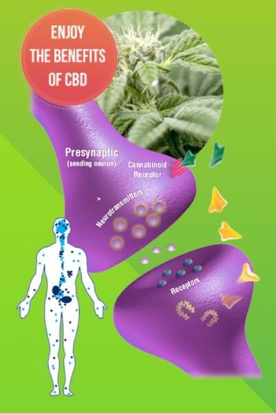 benefits of cannabidoil
