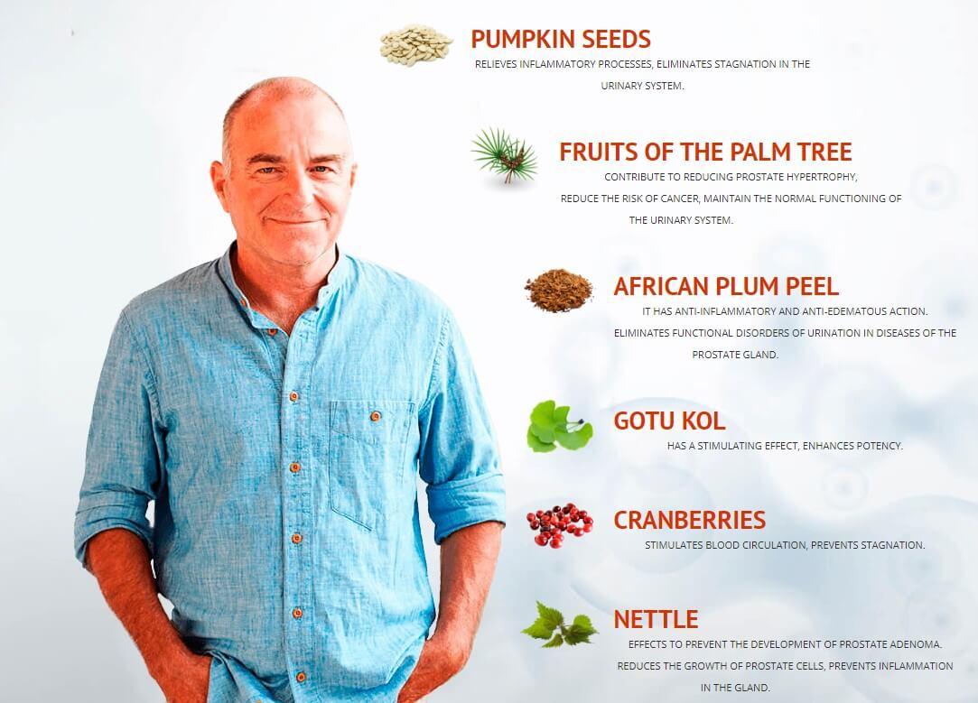 prostate, ingredients