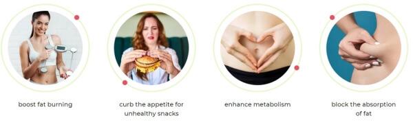 ingredients, weight loss drops slim dropico