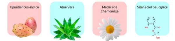 Ingredients aloe vera chamomilla