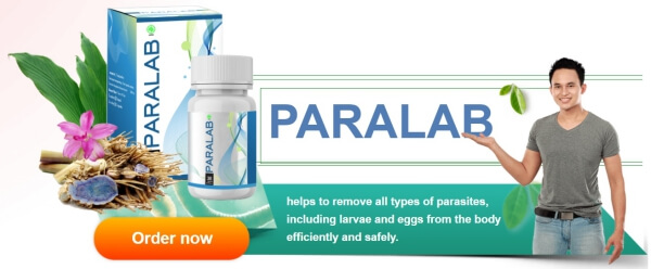 Paralab Price Indonesia
